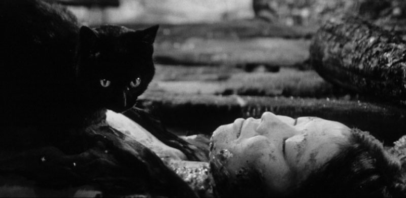 Kuroneko film 1968 cat on woman